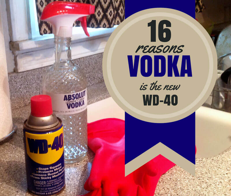 16 Reasons Vodka is the New WD-40