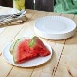 Picnic Reusable Melamine Plate