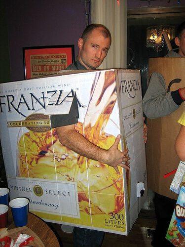Franzia Boxed Wine Costume
