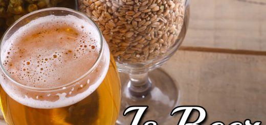 Is Beer Vegan? Your Questions Answered!
