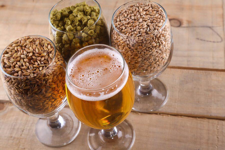 Terms for Beer Ingredients