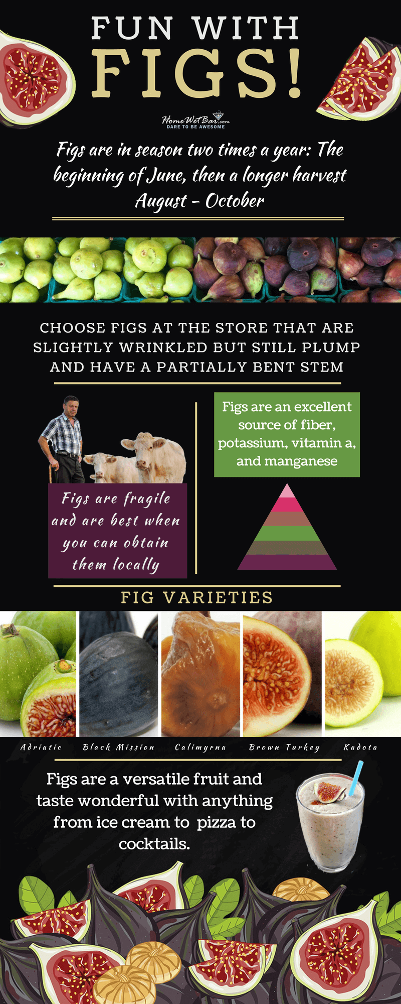 Fun with Figs Infographic