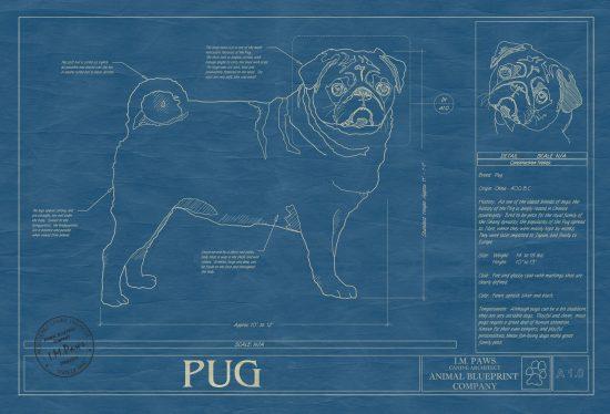 Custom Pet Blueprint