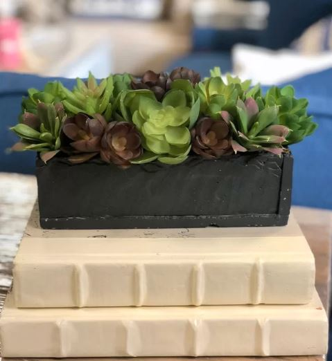Desk Top Planter Boss Day Gifts
