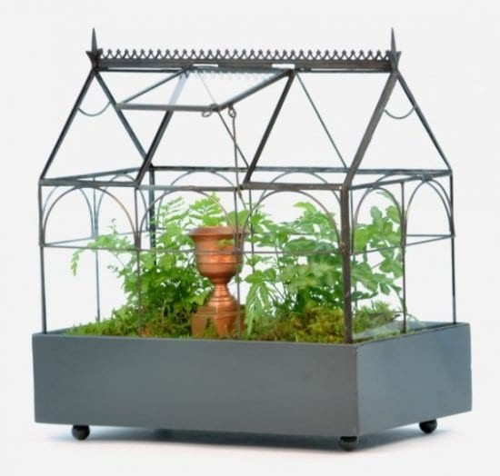 Terrarium is a Housewarming Gift for Someone Who Has Everything